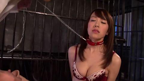 Shizuku Memori